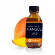 Arme-alimentaire-naturel-Mangue-50ml-0-0