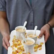 Tout-yaourtire-30-recettes-sucres-et-sales-0-0